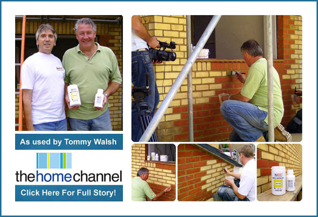 tommy-walsh-home-channel